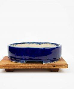 Royal blue bonsai pot